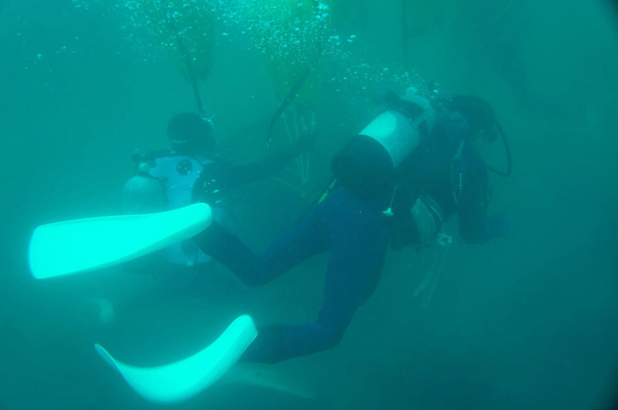 海底熟成作業